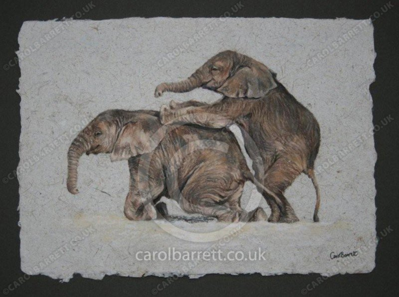 "<span style=""float:left"">Playmates</span> <span style=""float:right""><a href=""https://www.carolbarrett.co.uk/paintings/playmates/?from=/elephants-sold/page/2/"">More info »</a></span>"