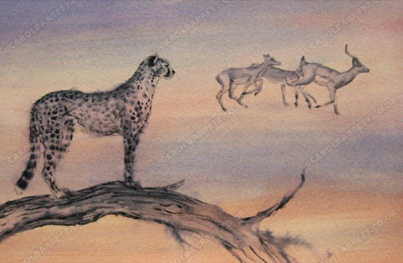 """<span style=""""float:left"""">Potential</span><span style=""""float:right""""><a href=""""https://www.carolbarrett.co.uk/paintings/potential/?from=/cheetah-sold/"""">More info »</a></span>"""