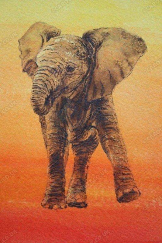 """<span style=""""float:left"""">Seeking comfort – Baby elephant</span><span style=""""float:right""""><a href=""""https://www.carolbarrett.co.uk/paintings/seeking-comfort-baby-elephant/?from=/elephants-sold/page/3/"""">More info »</a></span>"""