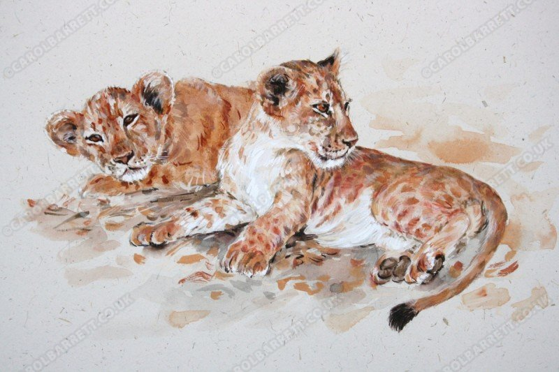 "<span style=""float:left"">Siesta over</span> <span style=""float:right""><a href=""https://www.carolbarrett.co.uk/paintings/siesta-over/?from=/big-cats-sold/page/2/"">More info »</a></span>"