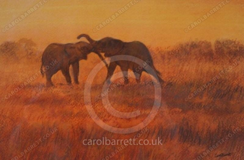 "<span style=""float:left"">Sunset bonds</span> <span style=""float:right""><a href=""https://www.carolbarrett.co.uk/paintings/sunset-bonds/?from=/elephants-sold/"">More info »</a></span>"