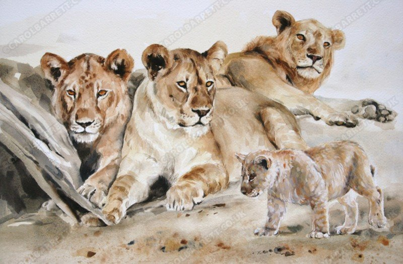 "<span style=""float:left"">Survivor</span> <span style=""float:right""><a href=""https://www.carolbarrett.co.uk/paintings/survivor/?from=/big-cats-for-sale/"">More info »</a></span>"