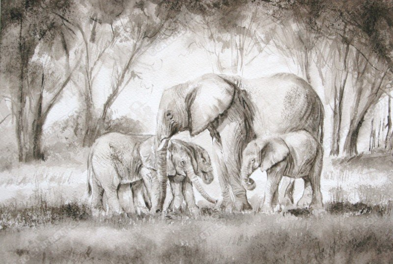 "<span style=""float:left"">Tranquil glade</span> <span style=""float:right""><a href=""https://www.carolbarrett.co.uk/paintings/tranquil-glade/?from=/elephants-sold/page/3/"">More info »</a></span>"