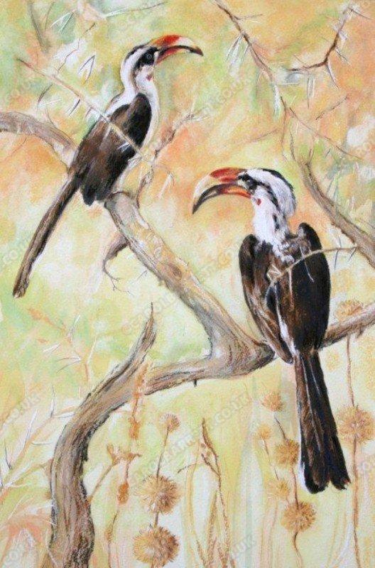 """<span style=""""float:left"""">Von Der Decken's Hornbill</span><span style=""""float:right""""><a href=""""https://www.carolbarrett.co.uk/paintings/von-der-deckens-hornbill/?from=/birds-for-sale/"""">More info »</a></span>"""