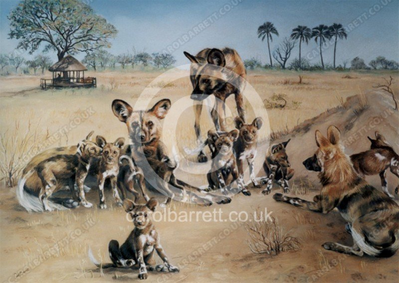 """<span style=""""float:left"""">Wild Dogs in Selinda</span><span style=""""float:right""""><a href=""""https://www.carolbarrett.co.uk/paintings/wild-dogs-in-selinda/?from=/wild-dog-and-hyena-sold/"""">More info »</a></span>"""
