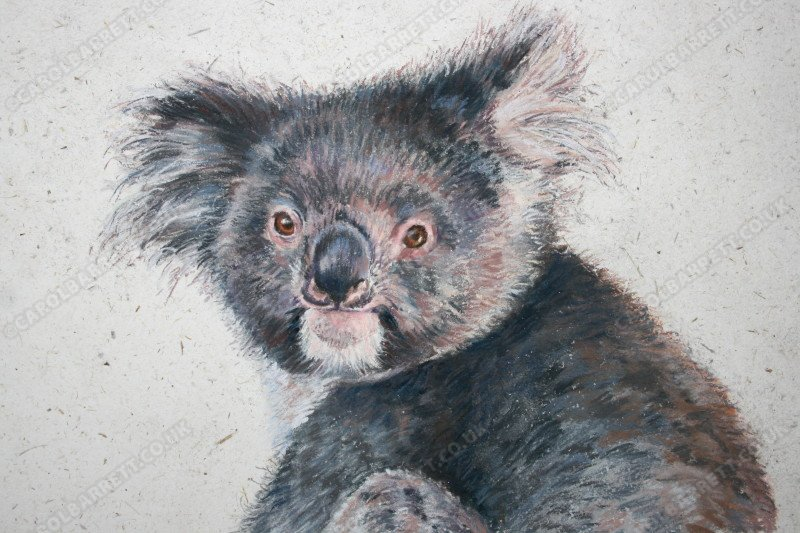 "<span style=""float:left"">Button</span> <span style=""float:right""><a href=""https://www.carolbarrett.co.uk/paintings/button/?from=/australian-wildlife-for-sale/"">More info »</a></span>"