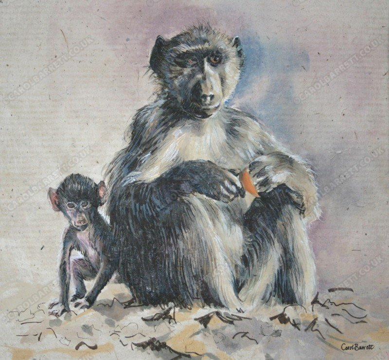 "<span style=""float:left"">Peek-a-boo</span> <span style=""float:right""><a href=""https://www.carolbarrett.co.uk/paintings/peek-a-boo-2/?from=/hippos-and-primates/"">More info »</a></span>"