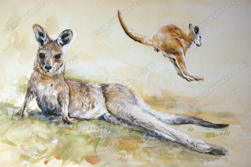 "<span style=""float:left"">Hop Off</span> <span style=""float:right""><a href=""https://www.carolbarrett.co.uk/paintings/hop-off/?from=/australian-wildlife-for-sale/"">More info »</a></span>"