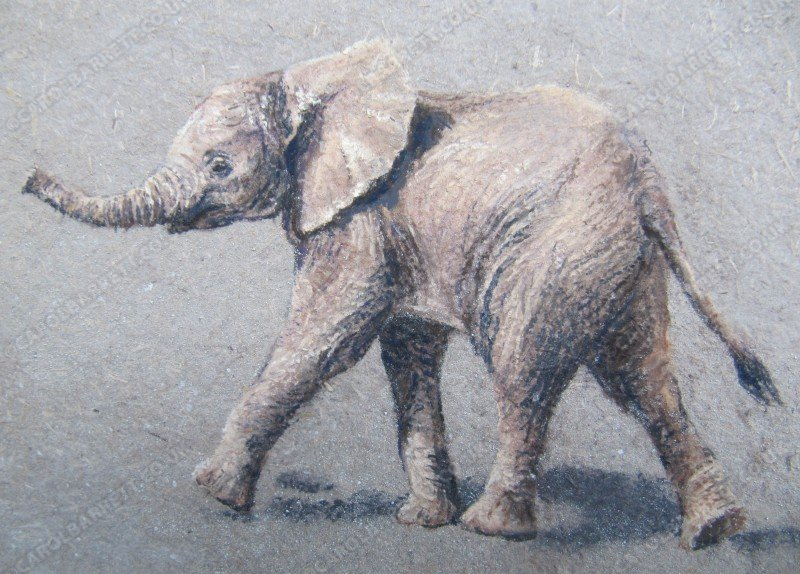"<span style=""float:left"">Little Seed ~ Mbegu</span> <span style=""float:right""><a href=""https://www.carolbarrett.co.uk/paintings/little-seed-mbegu/?from=/elephants-sold/"">More info »</a></span>"