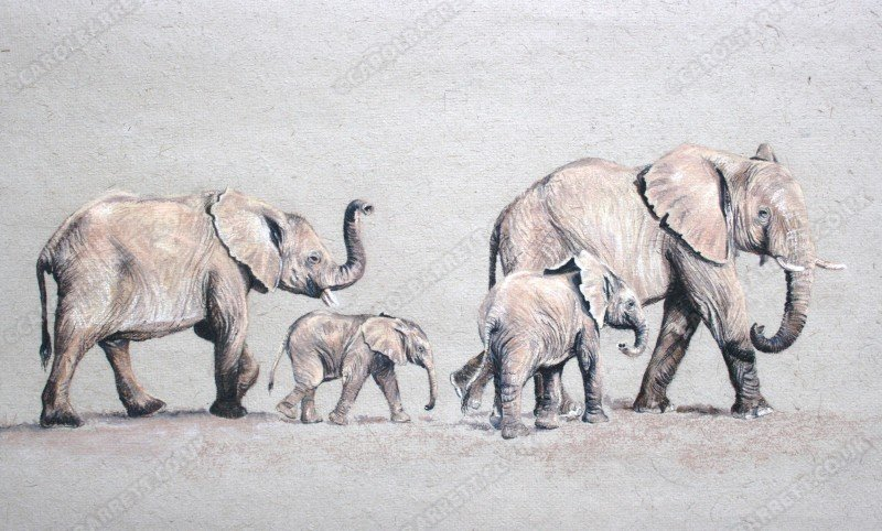 "<span style=""float:left"">Back in Line</span> <span style=""float:right""><a href=""https://www.carolbarrett.co.uk/paintings/back-in-line/?from=/elephants-sold/"">More info »</a></span>"