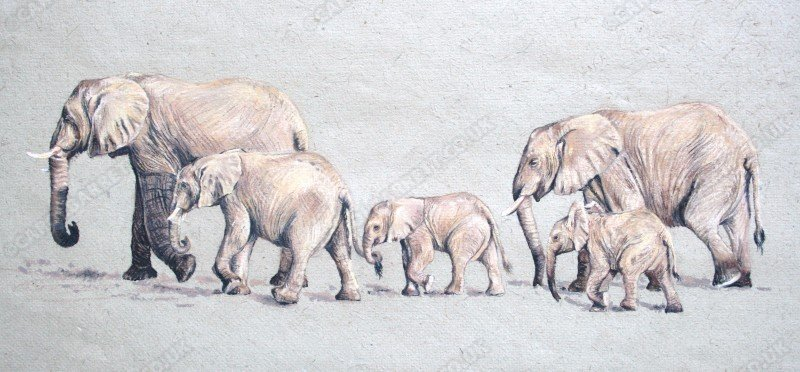 "<span style=""float:left"">Follow the Leader</span> <span style=""float:right""><a href=""https://www.carolbarrett.co.uk/paintings/follow-the-leader/?from=/elephants-sold/page/2/"">More info »</a></span>"