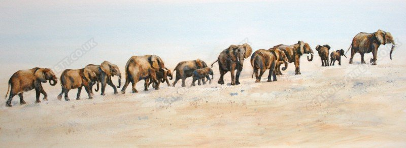 "<span style=""float:left"">Desert Giants</span> <span style=""float:right""><a href=""https://www.carolbarrett.co.uk/paintings/desert-giants/?from=/elephants-sold/"">More info »</a></span>"