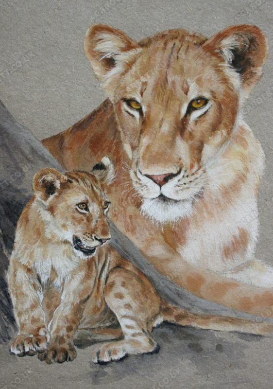 "<span style=""float:left"">J' adore ~ Total sale price will be donated to Born Free</span> <span style=""float:right""><a href=""https://www.carolbarrett.co.uk/paintings/j-adore/?from=/big-cats-for-sale/"">More info »</a></span>"