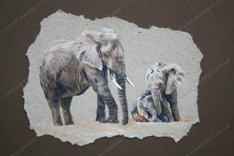 "<span style=""float:left"">Sacred Bonds</span> <span style=""float:right""><a href=""https://www.carolbarrett.co.uk/paintings/sacred-bonds/?from=/elephants-sold/"">More info »</a></span>"