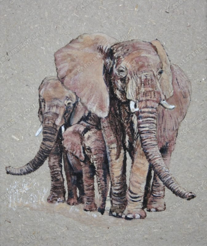 "<span style=""float:left"">Attentive Aunties</span> <span style=""float:right""><a href=""https://www.carolbarrett.co.uk/paintings/attentive-aunties/?from=/elephants-sold/"">More info »</a></span>"