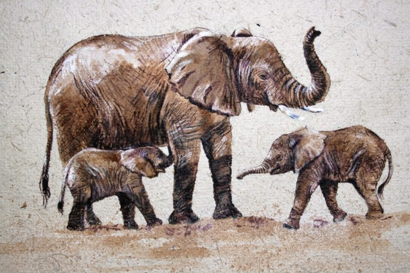 "<span style=""float:left"">Enough for Two</span> <span style=""float:right""><a href=""https://www.carolbarrett.co.uk/paintings/enough-for-two/?from=/elephants-sold/page/2/"">More info »</a></span>"
