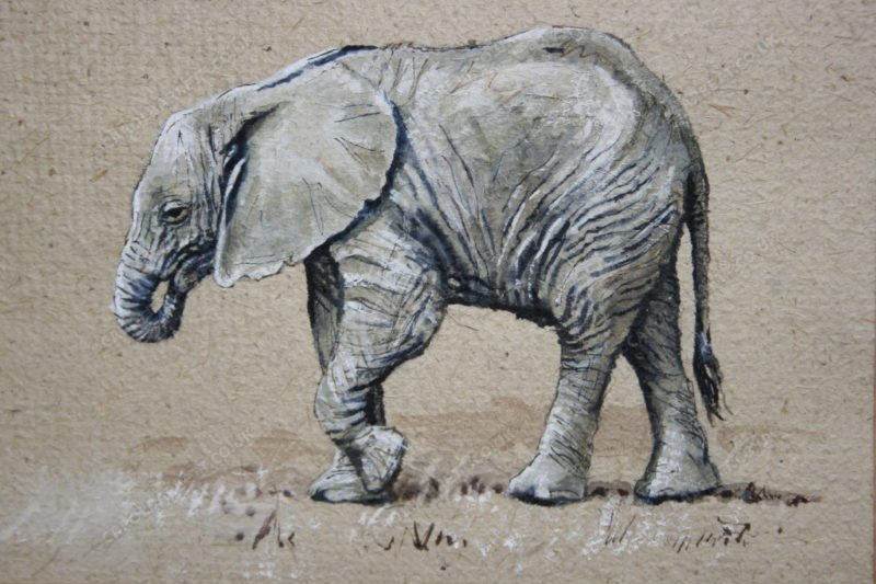 "<span style=""float:left"">Seeking Comfort</span> <span style=""float:right""><a href=""https://www.carolbarrett.co.uk/paintings/seeking-comfort-2/?from=/elephants-sold/page/2/"">More info »</a></span>"