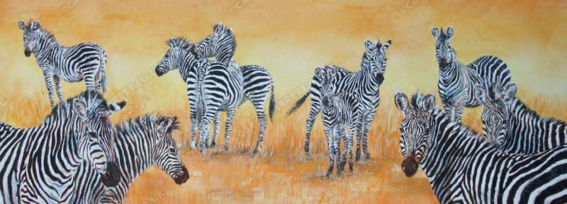 "<span style=""float:left"">Striped Maze ~ Crawshay's Zebra</span> <span style=""float:right""><a href=""https://www.carolbarrett.co.uk/paintings/striped-maze-crawshays-zebra/?from=/african-wildlife-for-sale/"">More info »</a></span>"
