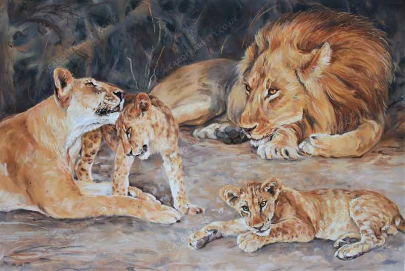 "<span style=""float:left"">Blissful moments ~ Total sale price will be donated to Born Free</span> <span style=""float:right""><a href=""https://www.carolbarrett.co.uk/paintings/blissful-moments/?from=/big-cats-for-sale/"">More info »</a></span>"