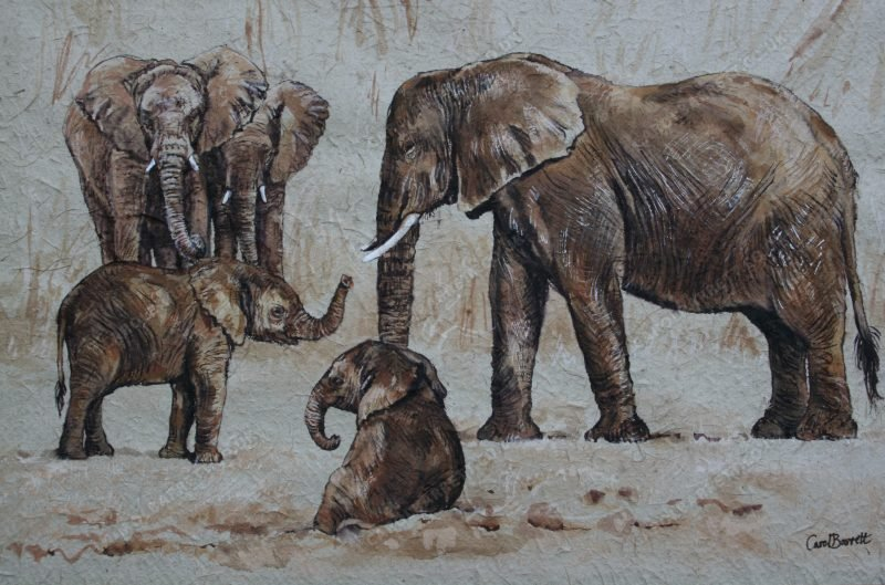 """<span style=""""float:left"""">Unbreakable bonds</span><span style=""""float:right""""><a href=""""https://www.carolbarrett.co.uk/paintings/young-friendship/?from=/elephants-for-sale/"""">More info »</a></span>"""