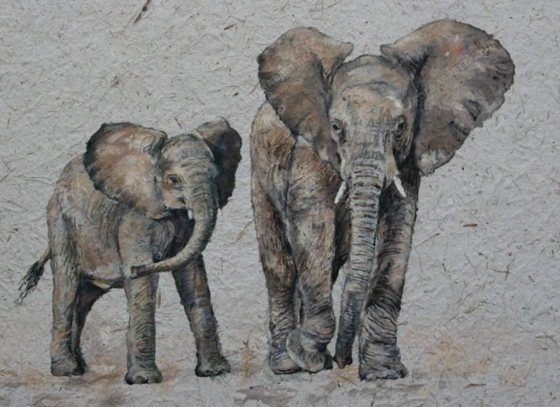 "<span style=""float:left"">Little mother</span> <span style=""float:right""><a href=""https://www.carolbarrett.co.uk/paintings/little-mother/?from=/elephants-for-sale/"">More info »</a></span>"