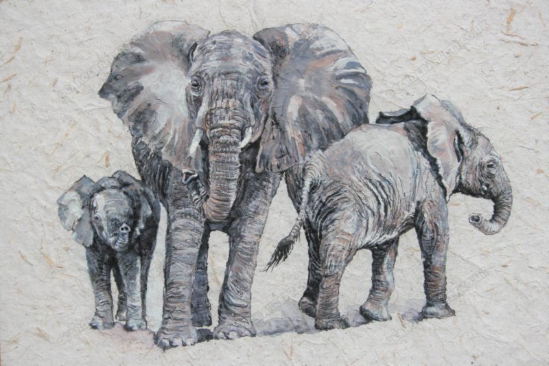 "<span style=""float:left"">Matriarch in the making</span> <span style=""float:right""><a href=""https://www.carolbarrett.co.uk/paintings/matriarch-in-the-making/?from=/elephants-for-sale/"">More info »</a></span>"