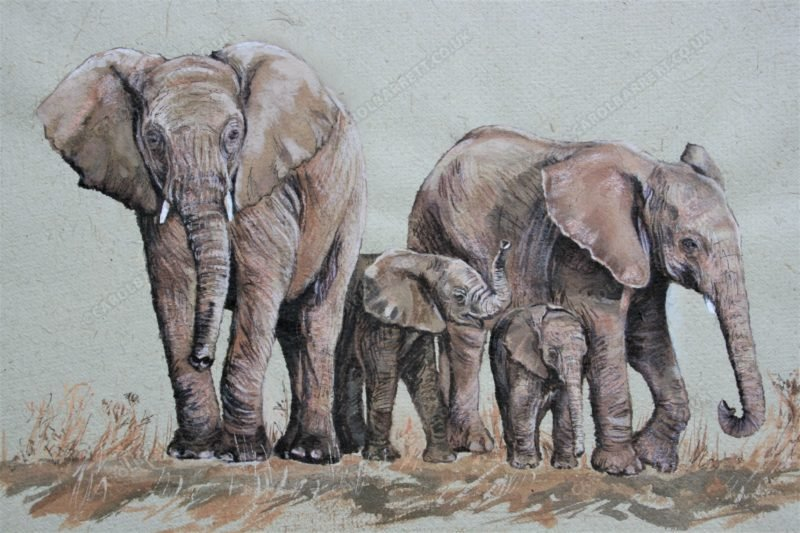 """<span style=""""float:left"""">Kindred bonds</span><span style=""""float:right""""><a href=""""https://www.carolbarrett.co.uk/paintings/elephant-bank/?from=/elephants-sold/page/3/"""">More info »</a></span>"""