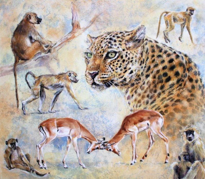 "<span style=""float:left"">Predator and Prey</span> <span style=""float:right""><a href=""https://www.carolbarrett.co.uk/paintings/predator-and-prey/?from=/african-wildlife-for-sale/"">More info »</a></span>"