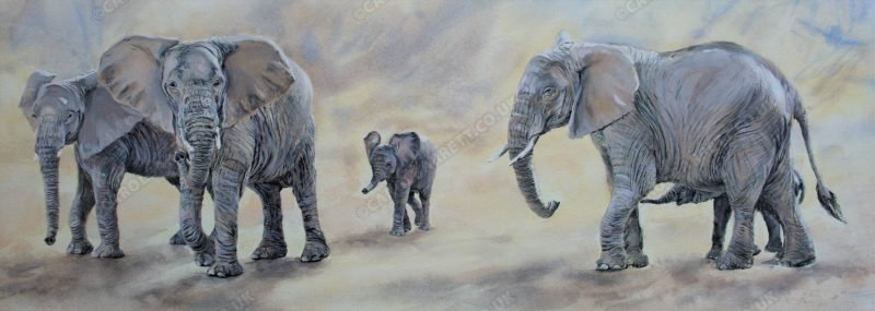 "<span style=""float:left"">Sentience</span> <span style=""float:right""><a href=""https://www.carolbarrett.co.uk/paintings/shared-sentience/?from=/elephants-for-sale/"">More info »</a></span>"