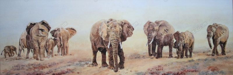 "<span style=""float:left"">The Search</span> <span style=""float:right""><a href=""https://www.carolbarrett.co.uk/paintings/the-search/?from=/elephants-for-sale/"">More info »</a></span>"