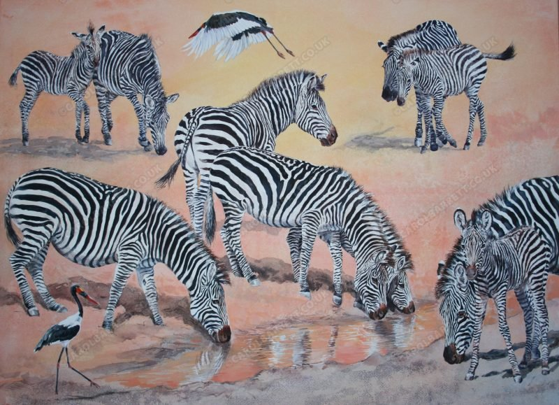 "<span style=""float:left"">Zebra Bonds</span> <span style=""float:right""><a href=""https://www.carolbarrett.co.uk/paintings/zebra-bonds-crawshays-zebra-with-saddle-billed-stork/?from=/african-wildlife-for-sale/"">More info »</a></span>"