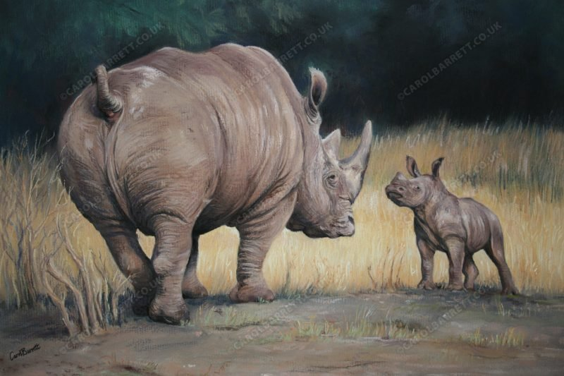 "<span style=""float:left"">Like Father like Son</span> <span style=""float:right""><a href=""https://www.carolbarrett.co.uk/paintings/like-father-like-son/?from=/african-wildlife-for-sale/"">More info »</a></span>"