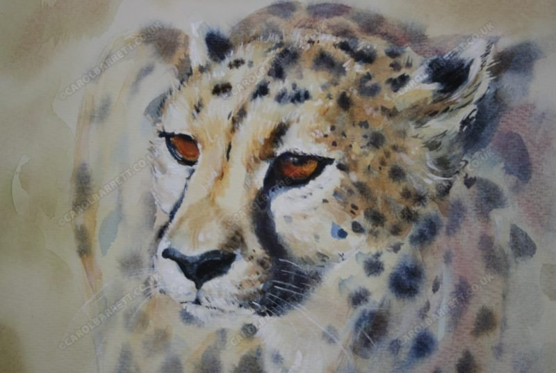 """<span style=""""float:left"""">Endangered mask</span><span style=""""float:right""""><a href=""""https://www.carolbarrett.co.uk/paintings/endangered-mask/?from=/cheetah-for-sale/"""">More info »</a></span>"""
