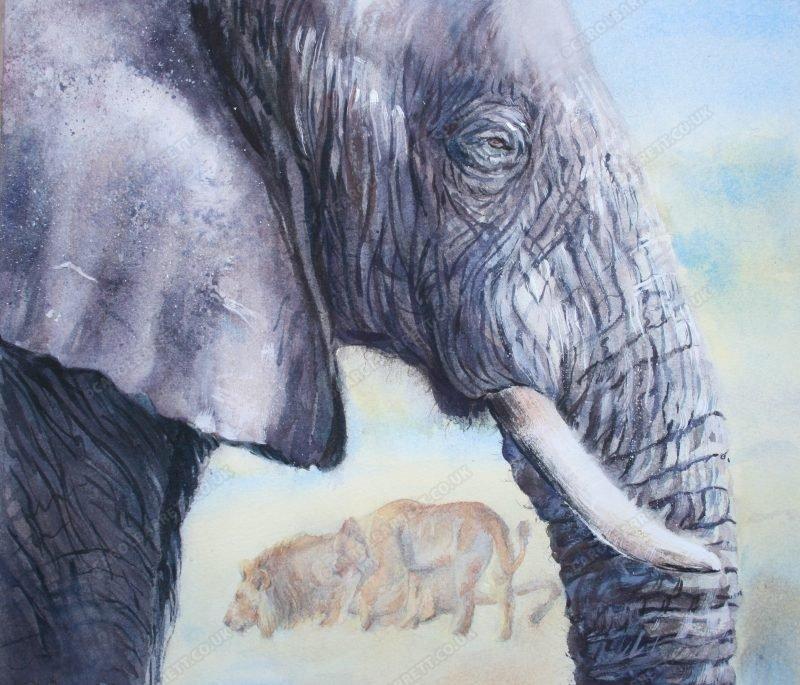 "<span style=""float:left"">Etosha Guardian</span><span style=""float:right""><a href=""https://www.carolbarrett.co.uk/paintings/etosha-guardian/?from=/elephants-for-sale/"">More info »</a></span>"