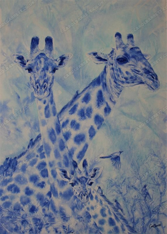 """<span style=""""float:left"""">Rhapsody ~ 2021 Sketch for Survival Invitational Collection</span><span style=""""float:right""""><a href=""""https://www.carolbarrett.co.uk/paintings/rhapsody/?from=/african-wildlife-for-sale/"""">More info »</a></span>"""