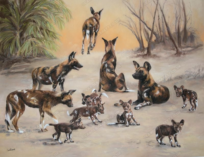 """<span style=""""float:left"""">Edge of Survival, Total sale price will be donated to Explorers against Extinction</span><span style=""""float:right""""><a href=""""https://www.carolbarrett.co.uk/paintings/edge-of-survival/?from=/african-wildlife-for-sale/"""">More info »</a></span>"""