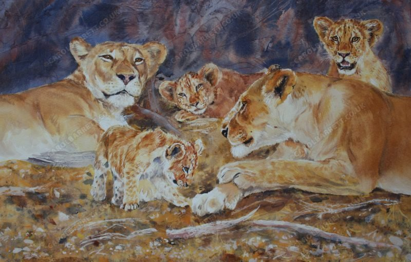"""<span style=""""float:left"""">New Generation</span><span style=""""float:right""""><a href=""""https://www.carolbarrett.co.uk/paintings/new-generation/?from=/big-cats-for-sale/"""">More info »</a></span>"""
